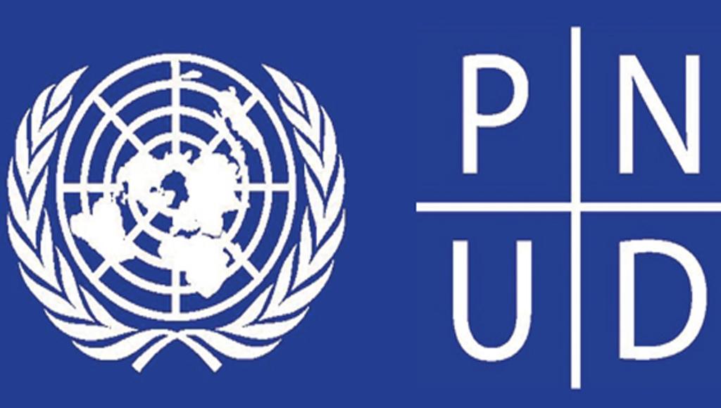 logo-pnud.jpg